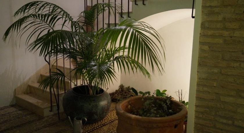 boutique hotels in córdoba  59