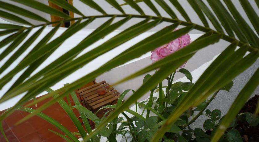 Constancia Guest House Beco dos Ferreiros, 6 Constância