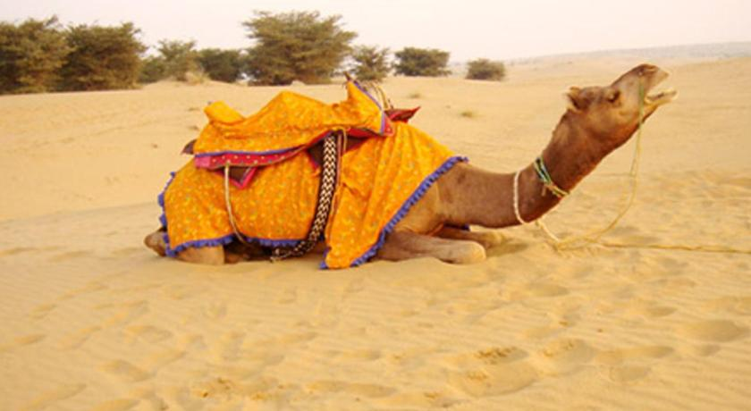 More about Marwar Camps Jaisalmer