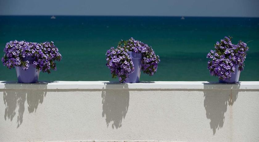 Terrazza sul Mare - Trappeto | Bedandbreakfast.eu
