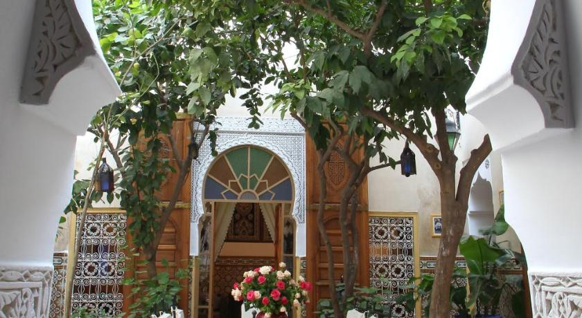 More about Riad Timel