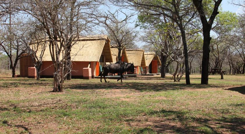Ingulule Safari Camp