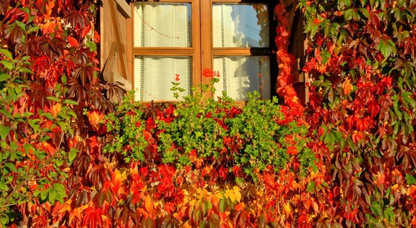 habitaciones con cama dosel en Huesca  Imagen 43