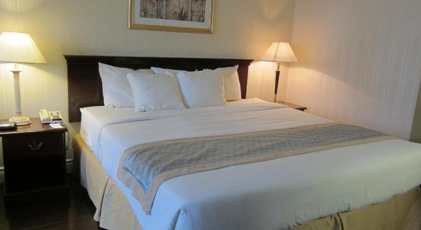 Deluxe King Room with 21 days of Parking - Guestroom Toronto Plaza Airport Hotel