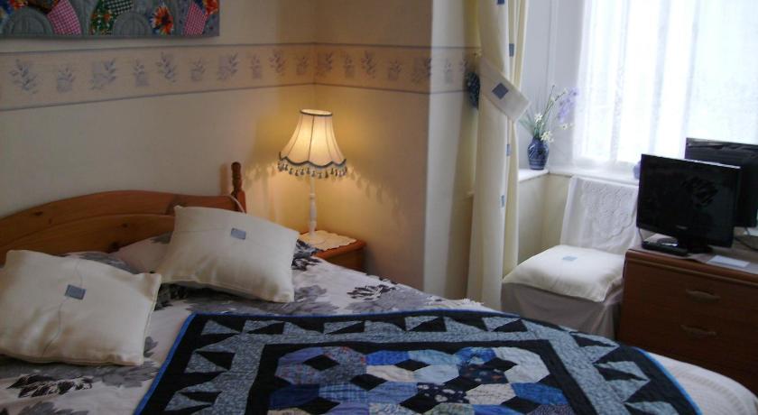 Plasnewydd Bed And Breakfast Irfon Terrace Llanwrtyd Wells