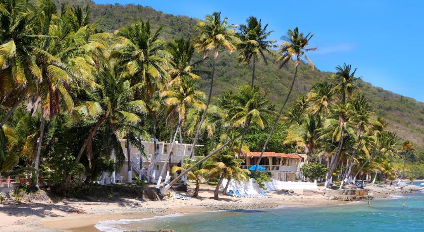 Caribe Playa Beach Hotel