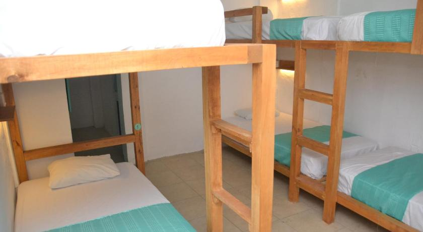 Bunk Bed in Female Dormitory Room - Bed Hostal MX