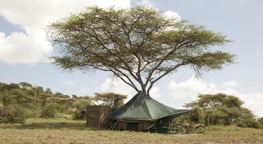 More about Green Camp Serengeti