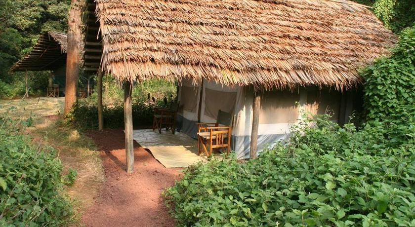 See all 11 photos Karatu Forest Tented Camp