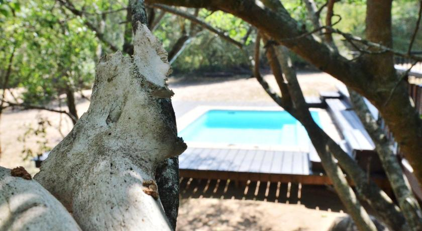 Swimming pool Umthiba Bush Lodge