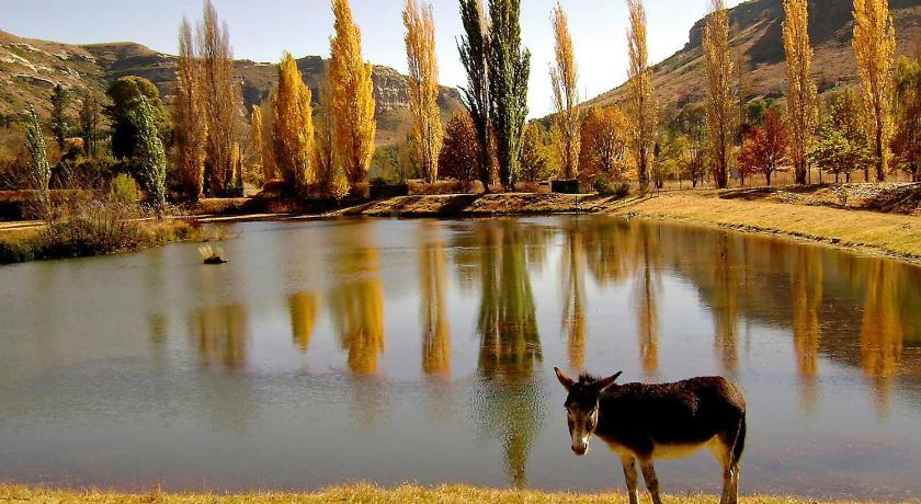 See all 40 photos Lake Clarens Guest House