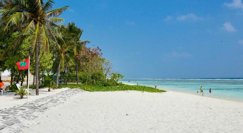 Coconut tree hulhuvilla beach book online bed for The family room hulhumale