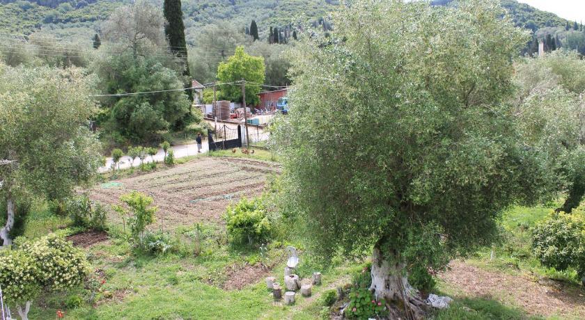 Galini Family House In Olive Garden - Agios Ioannis | Bedandbreakfast.eu