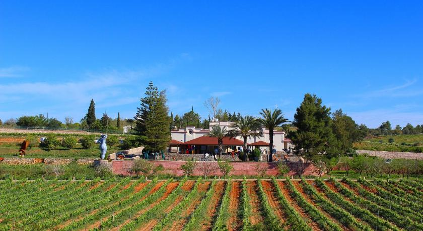 More about Quinta dos Vales Wine Estate