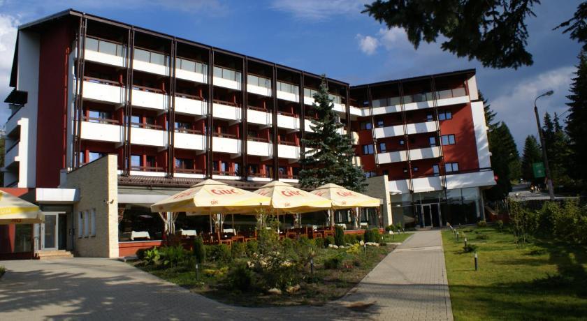 Cazare la  Hotel Carpati