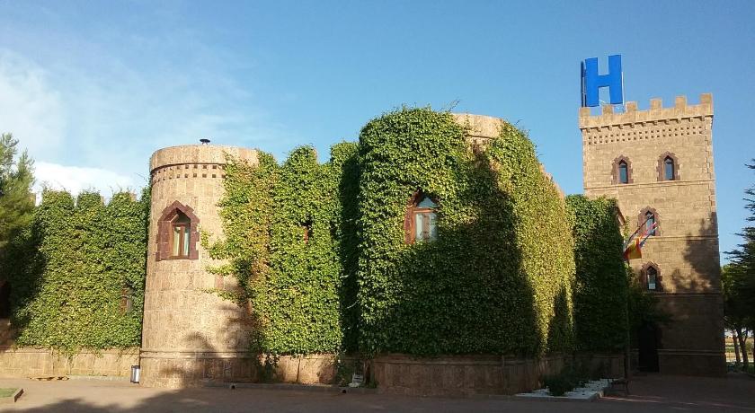 Hotel Viñedos Y Bodegas El Castillo-12061531