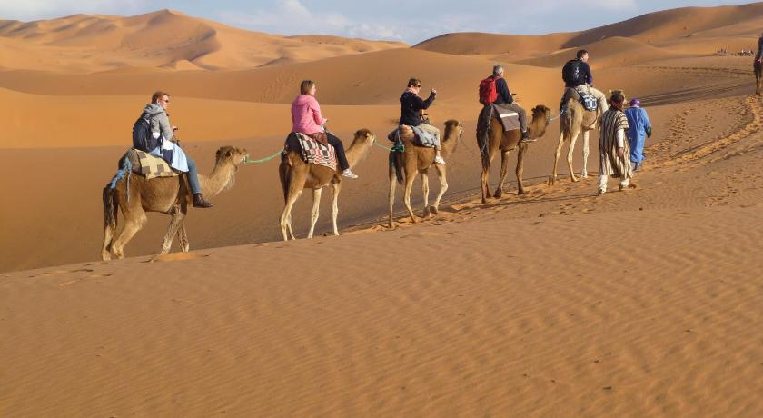 More about Bivouac Sahara Adventures