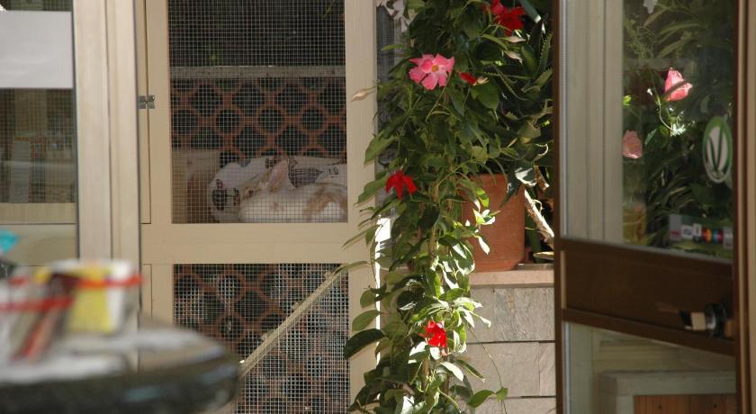 Hotel ristorante la terrazza lido di camaiore affari