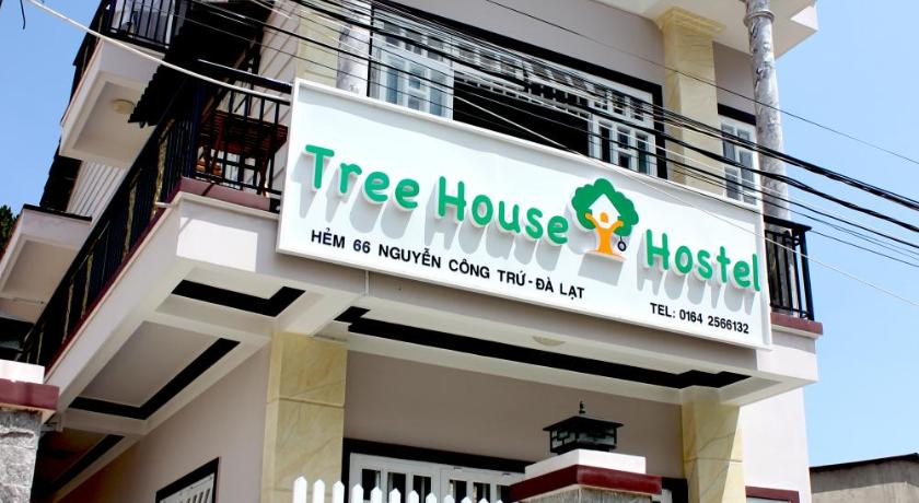 More about Tree House Hostel