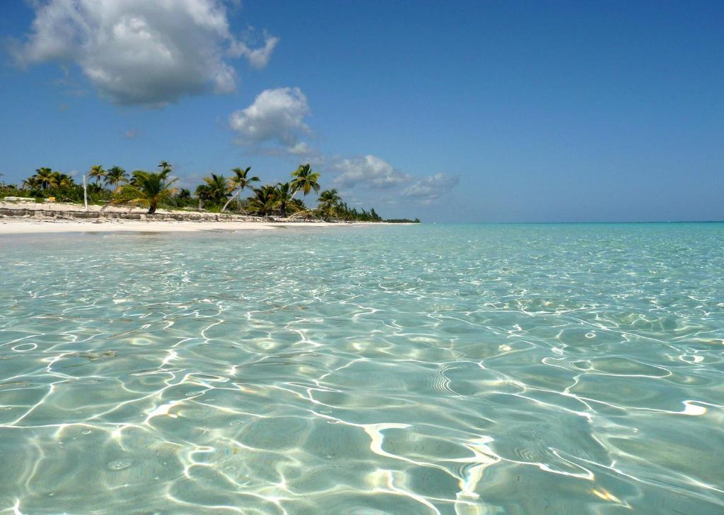 Nestled Between A Private White Sand Beach And Lush Rainforest Almaplena Eco Resort