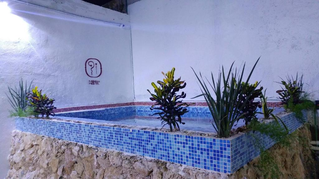 Swimming pool Kaban Hostel