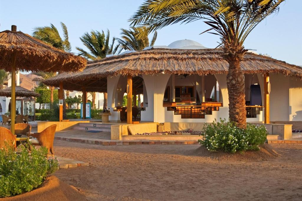 Bar/lounge Hilton Dahab Resort