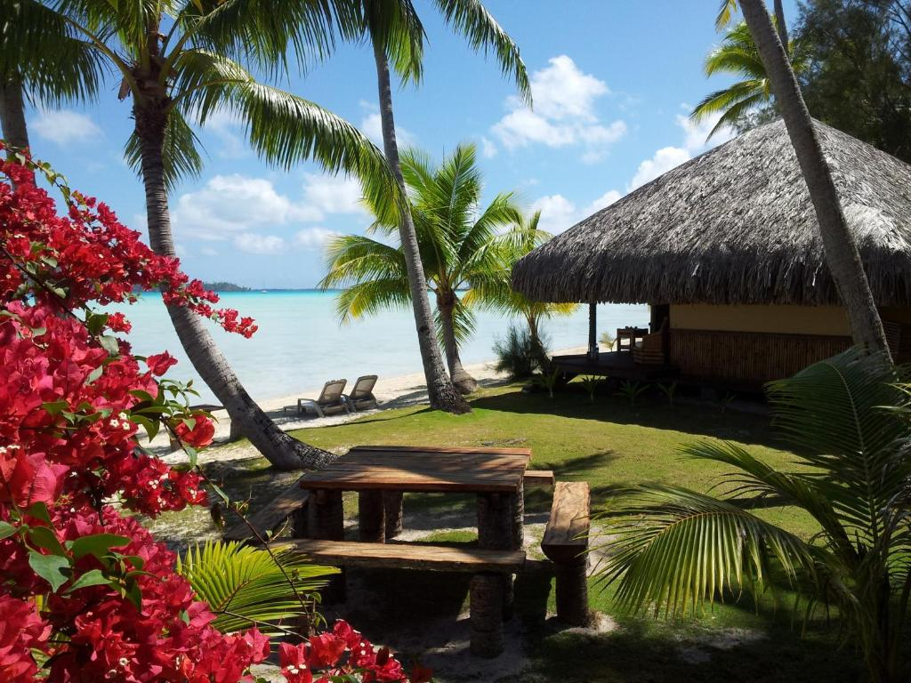 Surrounded By Turquoise Waters On Motu Piti Aau Eden Beach Hotel Bora