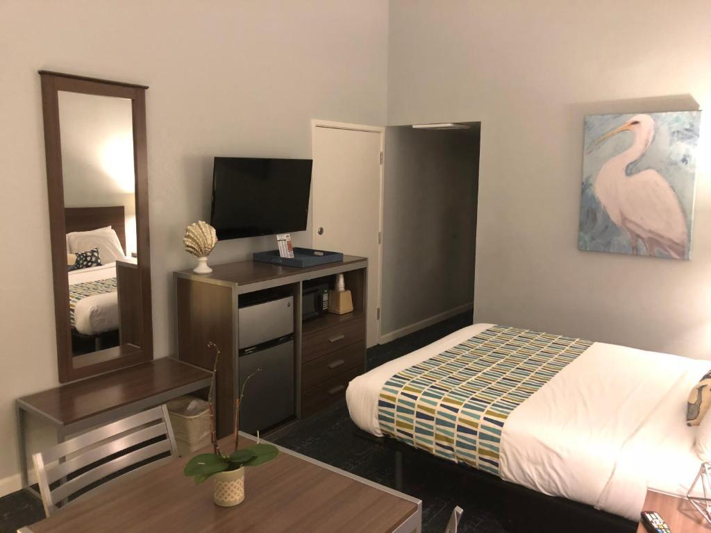 蒙特里 Ca 魔毯旅舍 The Magic Carpet Lodge 经济型 预订优惠价格 地址位置 联系方式