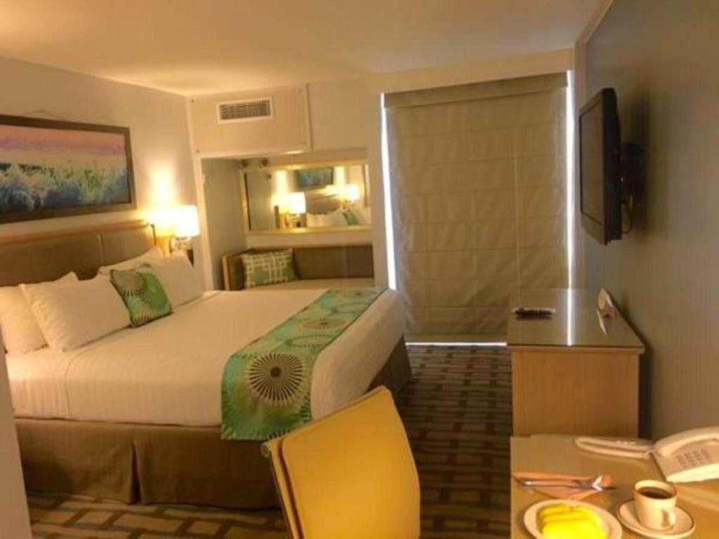 Double Room - Guestroom The Executive Hotel