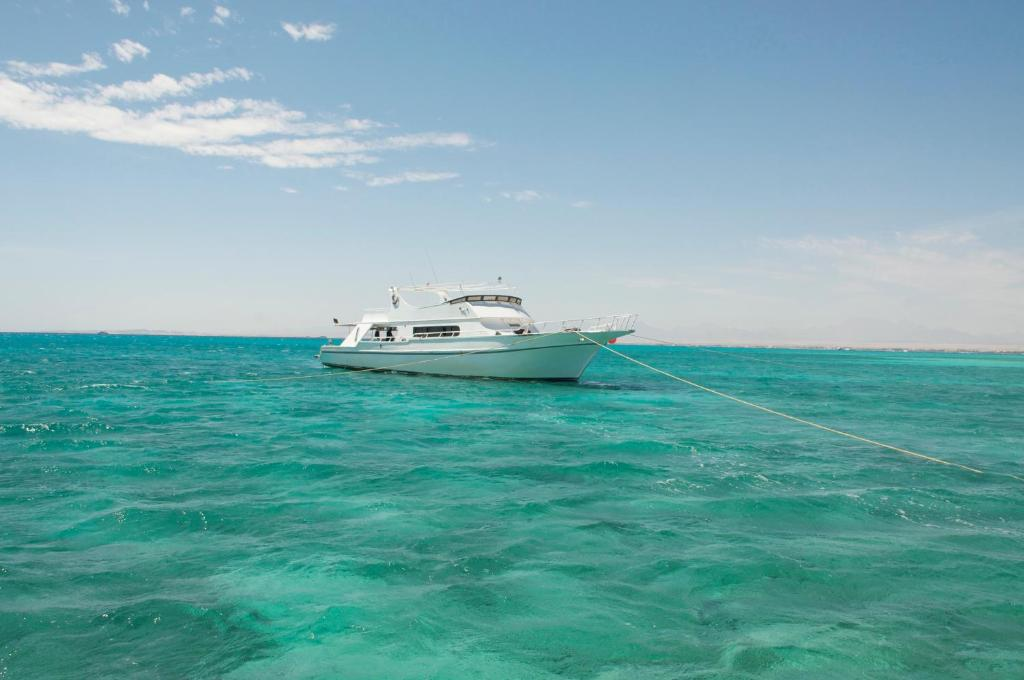 紅海博特海爾特酒店 (Red Sea Boatcharter)