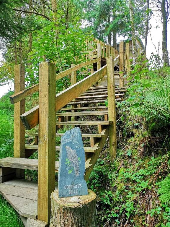 Llethrau Forest & Nature Retreats