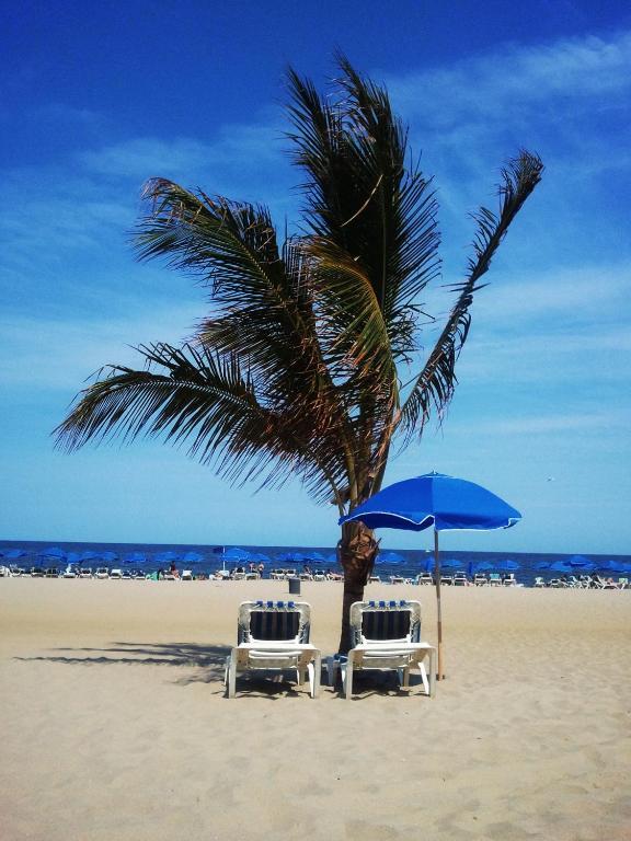 Ocean Place Resort Spa Coupons