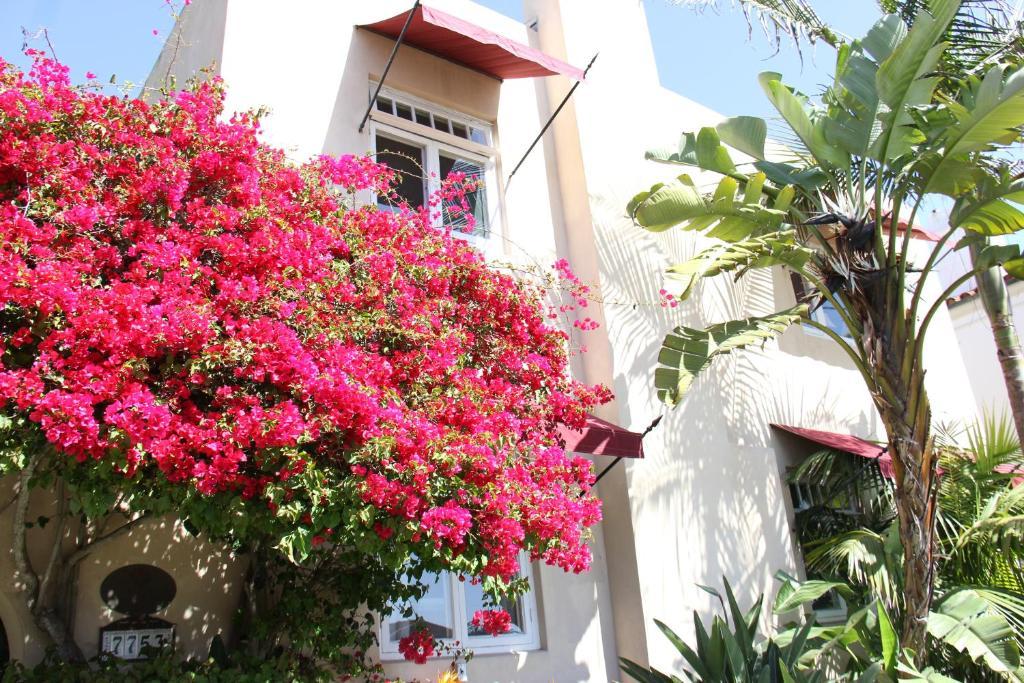 The Bed & Breakfast Inn At La Jolla photo