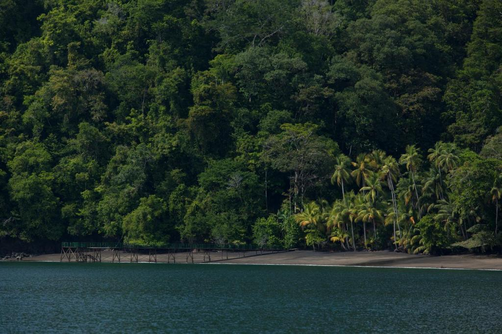 pantai Playa Cativo Lodge