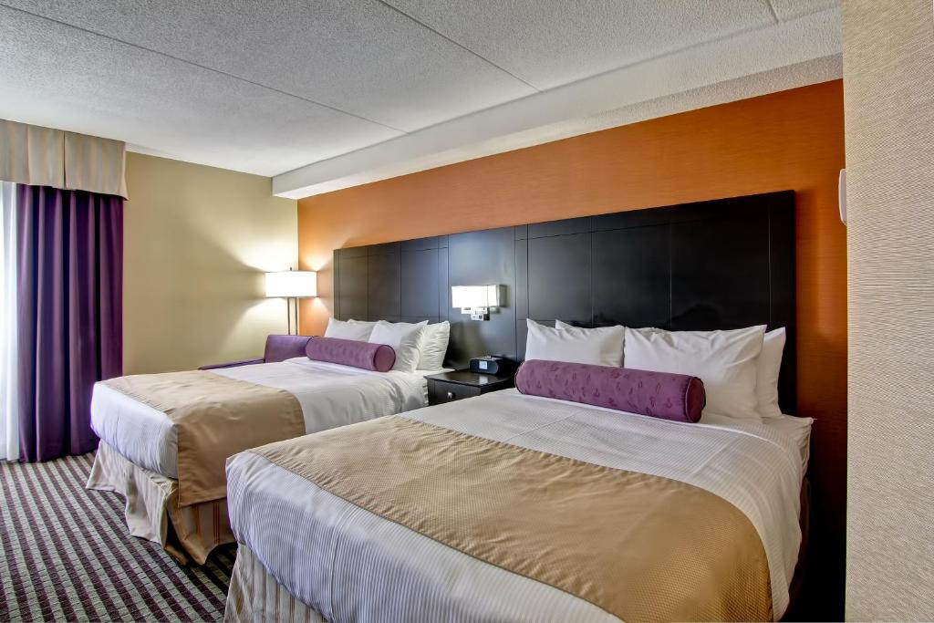 Book Now Best Western Plus Toronto North York Hotel & Suites (North York, Canada). Rooms Available for all budgets. Free internet a year-round pool and on-site eats attract guests to the non-smoking Best Western Plus Toronto North York Hotel & Suites. All 145 rooms at the six-story property