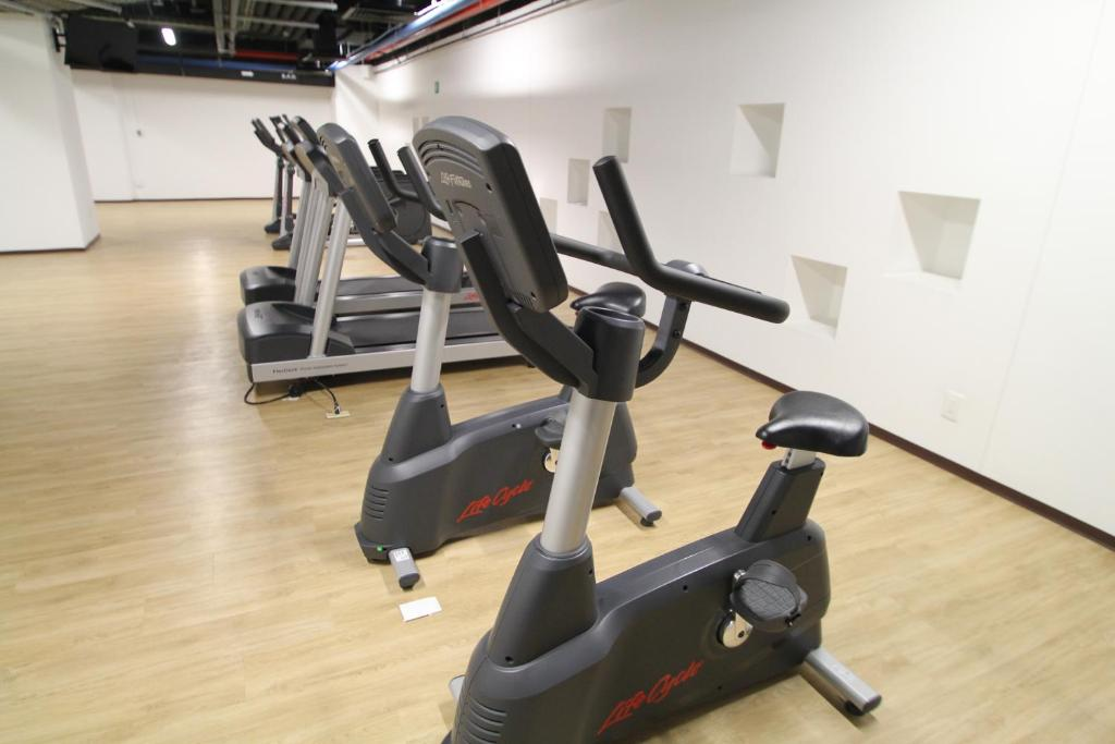 Fitness center Boutique Apartament Carso Alameda-1002