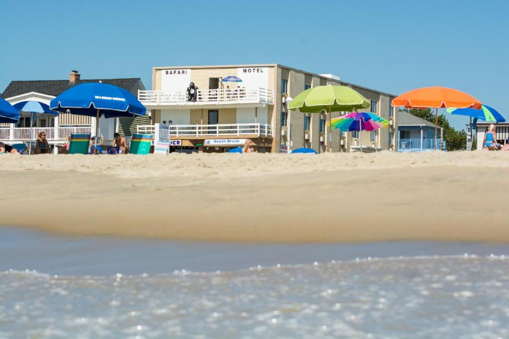 Safari Motel Boardwalk photo
