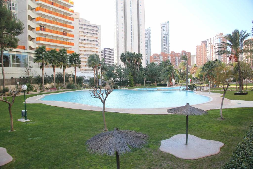 Swimming pool Gemelos 22 - Fincas Benidorm