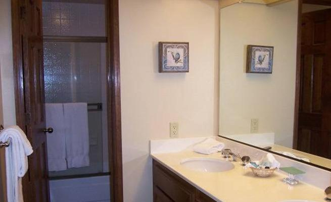 Bathroom Lakeview Condo 925 8