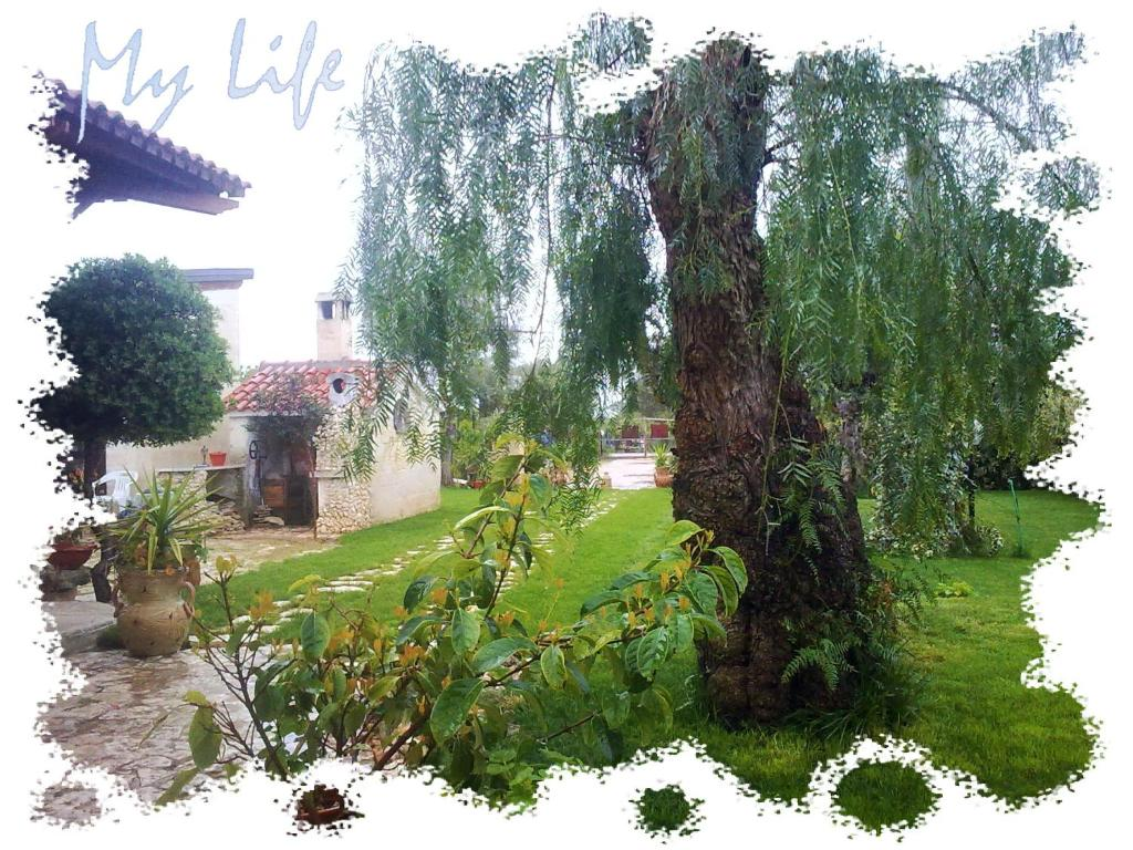 Book Now MyLife B&B (Castellaneta Marina, Italy). Rooms Available for all budgets. Just 100 metres from the Stornara Nature Reserve MyLife B&B is 5 minutes' drive from Castellaneta Marina beach. This traditional stone-walled farmhouse is surrounded by 2