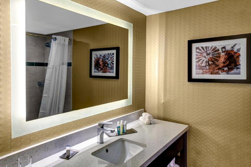 Bathroom Vanities Dfw doubletreehilton® arlington dfw south - arlington tx 1507