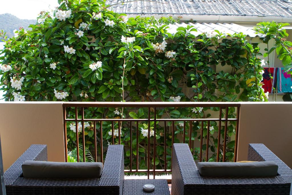 Deluxe Garden Double or Twin Room Mama Beach Residence