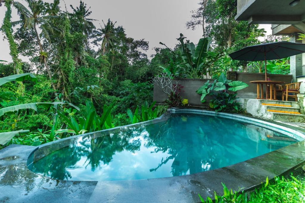 Swimming pool Darma Asih Ubud Villa