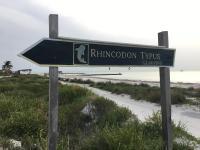 Rhincodon Typus, Hotel - Isola Holbox