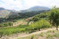 Agriturismo Fattoria di Arieste, Farmy - Maierà