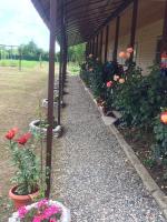 Guest house Mandarinhouse, Vendégházak - Alakhadzi