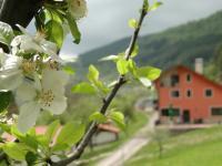 Hotel Garvanec, Country houses - Druzhevo