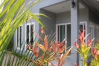 Mambo house, Holiday homes - Ao Nang Beach