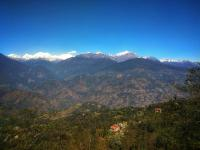 The Ace Pine Valley, Hotels - Pelling