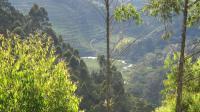 Rushaga, Turistaházak - Kisoro